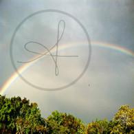 Sand Hill Rainbow over Treetops