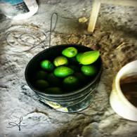 Belize Bucket of Mangoes
