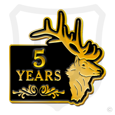 Elks New Year Lapel Pins