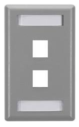 Black Box 2-Port Gray Single-Gang Keystone Wallplate WP461
