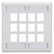 Black Box 12-Port White Double-Gang Keystone Wallplate WPT494