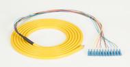 Black Box 3m LC OS2 9-Micron SM Fiber Pigtail 12-Strand OFNR PVC Yellow FOPT50S1-LC-12YL-3