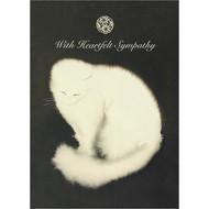 Sympathy Cat Greeting Card