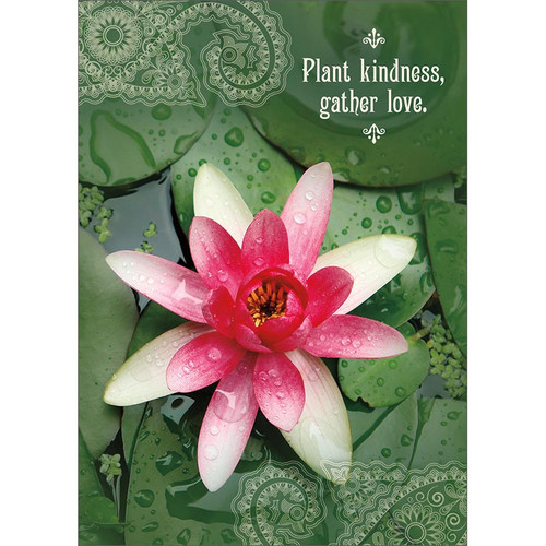 Kindness Lily Greeting Card