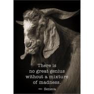 Great Genius Greeting Card