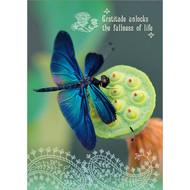 Gratitude Dragonfly Greeting Card