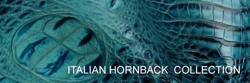 italian-hornback.jpg