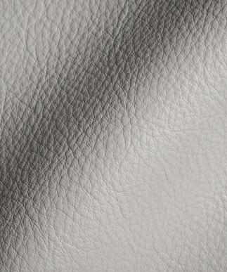Luxtan Silver