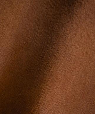 Hair on Hide Chestnut