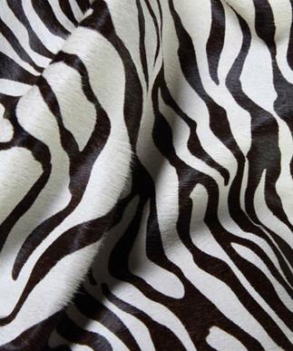 Small Zebra B&W