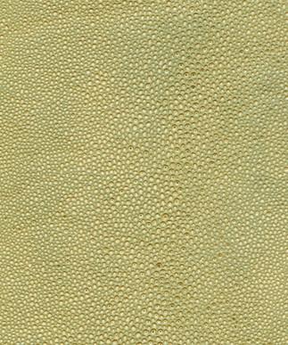 Shagreen Golden Sand