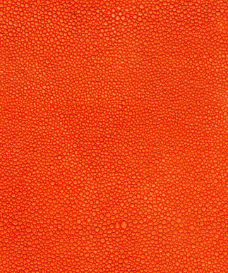 Shagreen Orange