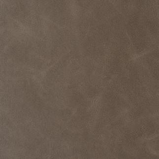 Sonoran Grey