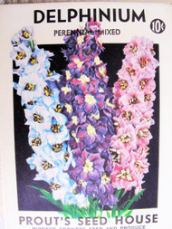Vintage Seed Packet  Delphinium  Flowers