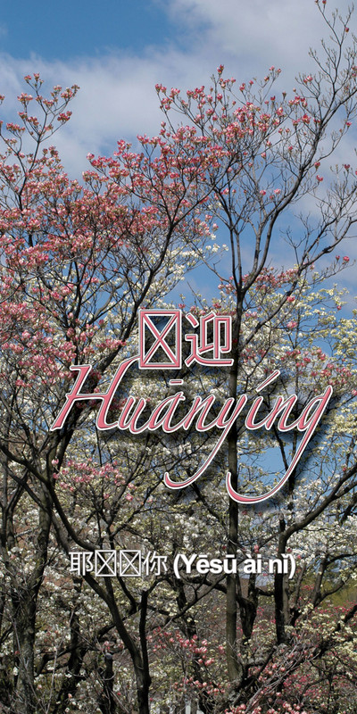 Church Banner featuring Cherry Blossoms for Chinese Church - CUSTOMIZE
