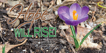 Church Banner featuring Tulip with Hope Will Rise Theme