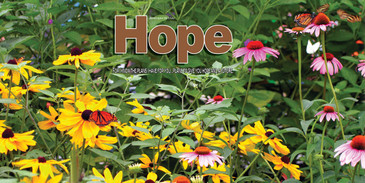 Church Banner featuring Flowers and Butterflies with Hope Theme