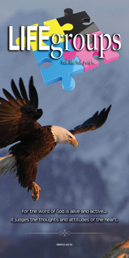 Church Banner featuring Bald Eagle with Life Groups Theme