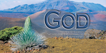 Church Banner featuring Silversword/Mt. Haleakala with Love of God Theme
