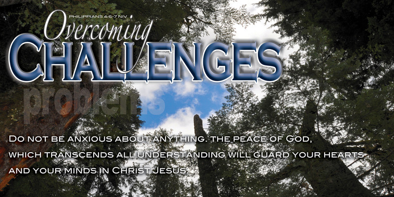 Church Banner featuring Giant Redwoods with Motivational Theme