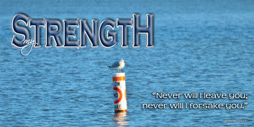 Church Banner featuring Lonely Seagull with Motivational Theme