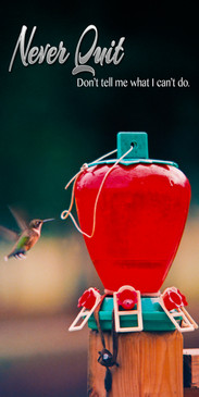 Church Banner featuring Hummingbirds with Motivational Theme