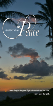 Church Banner featuring Tropical Night Sky with Peace Theme