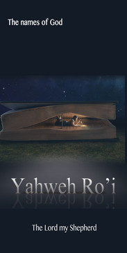 Church Banner featuring Bible with Special Effect and The Lord Is My Shepherd