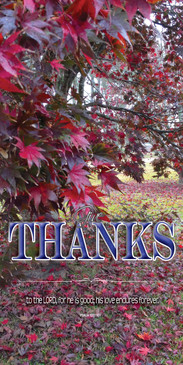Church Banner featuring Japanese Maples in Fall with Thanksgiving Theme