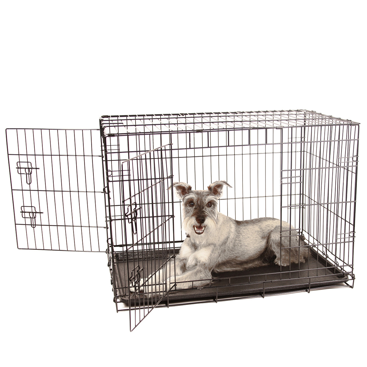 Double Door Dog Crate Intermediate Carlson Pet