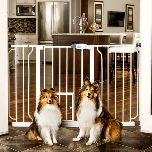 Expandable extra wide pet gate