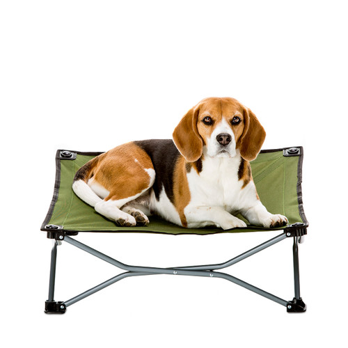 Carlson Small Portable Dog Cot