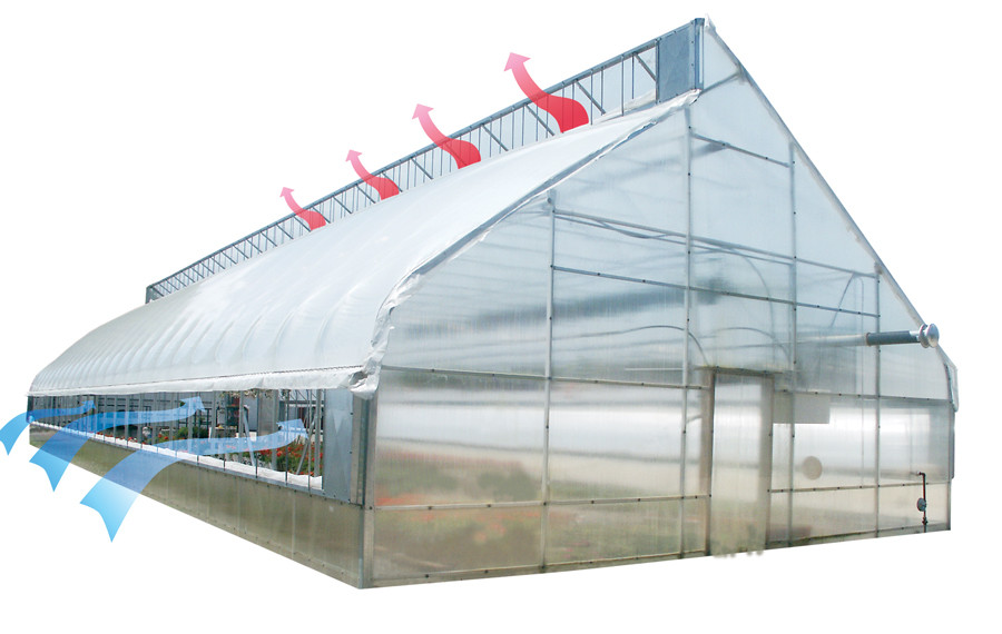 Xa 30 Commercial Greenhouse