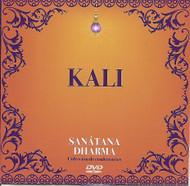 DVD KALI - RUBÉN CEDEÑO (VIDEO CONFERENCIA)