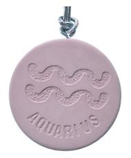 Aquarius Zodiac Diffuser/Air Freshener (Vanilla) *SALE*