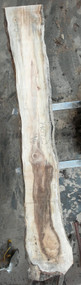 Maple, Soft, Slab, Spalted, Knotty, Punky, Slabs