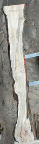 Maple, Soft, Spalted, Slab, Slabs