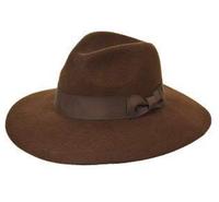 Brown Stiff Wide Brim Fedora Hat