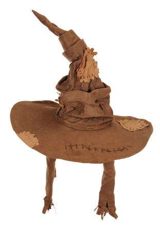 sorting hat novelty hat with wire brim