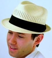Stingy Brim Panama Hat