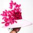 Selena, Pink Derby Hat by Arturo Rios.