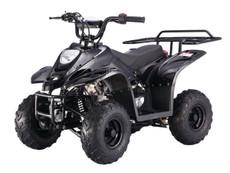 TaoTao ATVs™ | Official Dealer