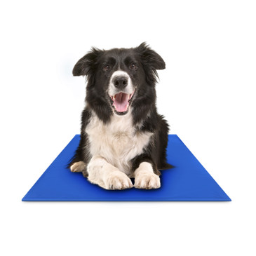 "Hugs Pet Products Chillz Pad Comfort Cooling Gel Pet Pad , Large (36"" x 20"")"