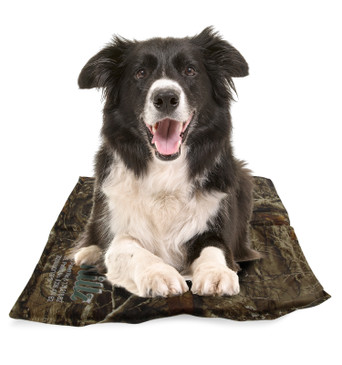 CHILLZ Cooling Pad for Dogs – Pressure Activated Gel Dog Cooling Mat, Perfect for Hot Summer Days - No Refrigeration or Electricity Required