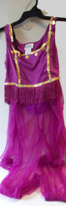 Purple Belly Dancer Adult Costume S M L XL NIP