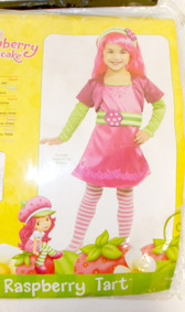 Rubies Strawberry Shortcake Raspberry Tart Pink Green Costume Dress Child T 2-4 NIP