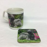 Cesky Terrier Mug and Coaster Set