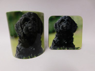 Cockapoo Dog Mug and Coaster Set