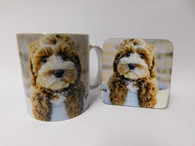 Cockapoo Brown & White Puppy Mug and Coaster Set
