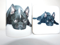 Black Boston Terrier Laying  Mug and Coaster Set